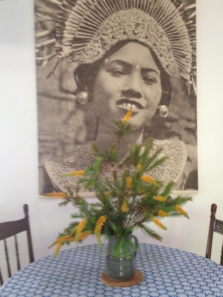 Monique's brother Marc De Jong's striking & distinctive artwork