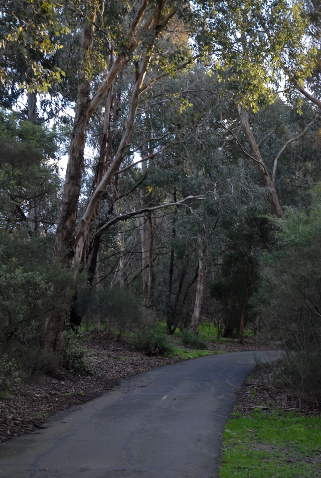 The pretty Mullum mullum bike trail is closes to Peter's home