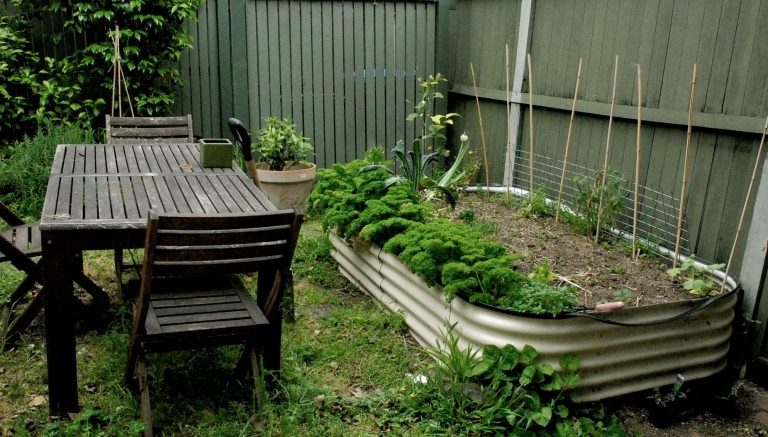 The vege patch - The Reeves' place in Prahran.
