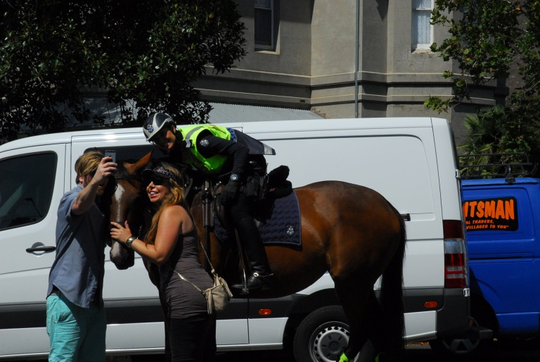 "St Kilda Festival 2015 Selfies with ""Shakira"" the police horse"